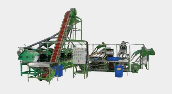 Automatic cashew shelling line