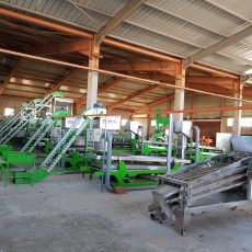 Automatic cashew processing plant mekong 3tpd