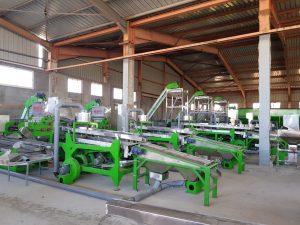 Automatic cashew shelling line Model SM200